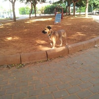 Photo taken at גינת הכלבים קיריית השרון by Elad G. on 11/16/2012