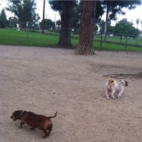 Photo taken at Recreation Park Dog Park by Roger M. B. on 1/29/2015