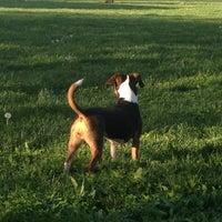 Photo taken at Kellogg Dog Park by Trish R. on 4/30/2013