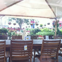Photo taken at Dubai Garden Center دبي جاردن سنتر by Rawan G. on 2/27/2013