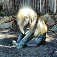 Photo taken at Fort Worth Zoo by Jody on 3/25/2013