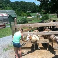 Photo taken at Natural Bridge Zoo by Ashley C. on 6/12/2013