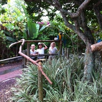 Photo taken at Gatorland - Aviary by Chaz P. on 6/1/2012