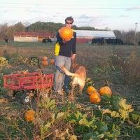 Photo taken at Denny's U-Pick Pumpkins by Amy M. on 10/16/2011