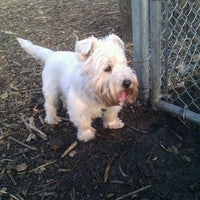Photo taken at Columbia Dog Park by Dan H. on 3/11/2012