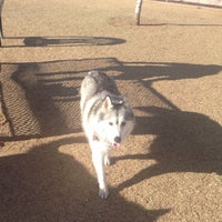 Photo taken at Echo Mountain Dog Park by Hope D. on 1/25/2014