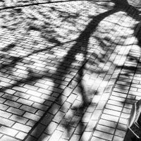 Photo taken at Occidental Square by TJ H. on 4/24/2013