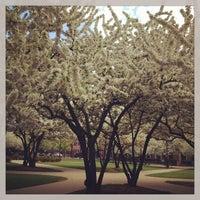 Photo taken at DePaul University Quad by Jen M. on 5/17/2013