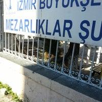 Photo taken at Izmir Buyuksehir Belediyesi Mezarliklar Sube Müdürlüğü by Timuchin ! on 2/4/2014