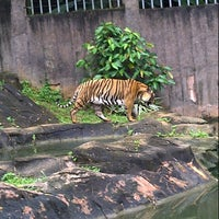 Photo taken at Zoo Melaka by mie z. on 12/24/2012