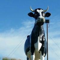 Photo taken at Salem Sue - World's Largest Holstein Cow by Mark J. on 7/10/2016