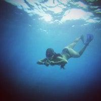 Photo taken at Vallarta Adventures by Maria F. on 9/9/2014