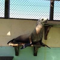 Photo taken at Morro Bay Aquarium by Jaden G. on 5/9/2015