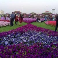 Photo taken at Dubai Miracle Garden by Sadique on 3/1/2013