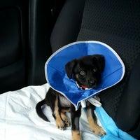 Photo taken at The Animal Medical Center by Sara H. on 10/21/2012