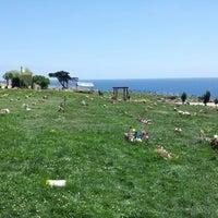 Photo taken at Cementerio de Playa Ancha by Patricio F. on 11/17/2012
