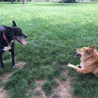 Photo taken at Broad Ripple Park Canine Companion Area by Alan R. on 7/5/2015