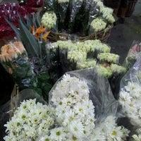 Photo taken at Mercado de flores de Buenos Aires by Maximiliano O. on 11/23/2012