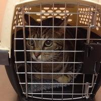 Photo taken at Park Animal Hospital by Jenny S. on 8/1/2013