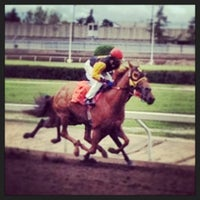 Photo taken at The Horses at Northlands Park by Paul F. on 6/29/2013