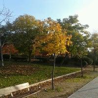 """Photo taken at Parque de """"La Ribota"""" by Genial_es on 11/22/2012"""