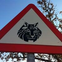"""Photo taken at Parque de """"La Ribota"""" by Genial_es on 12/12/2013"""