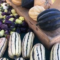 Photo taken at Healdsburg Farmers' Market by Anneke S. on 10/8/2016