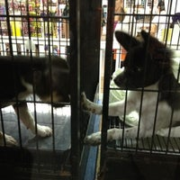 Photo taken at The Pet Corner by Chelseymango on 7/19/2012