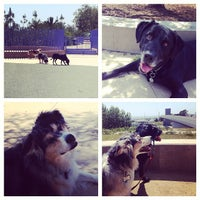 Photo taken at Newport Beach Dog Park by Kelly S. on 4/12/2014