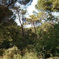 Photo taken at Parco Naturale by Antonio M. on 8/4/2013