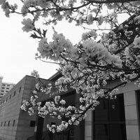 Photo taken at 계룡스파텔 by 상현 김. on 4/4/2015