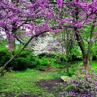 Photo taken at Highland Park Poet's Garden by T.C. P. on 5/10/2013