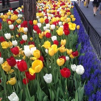 Photo taken at The Magnificent Mile by Katie E. on 5/16/2013