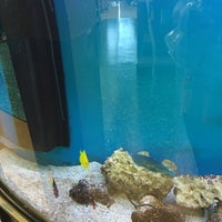 Photo taken at Petco by JeanC! P. on 1/7/2016