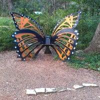 Photo taken at Zilker Botanical Gardens by Angela D. on 11/8/2013