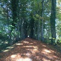 Photo taken at Nieuwenhove Bos by Jasmien W. on 10/31/2015
