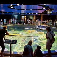 Photo taken at New England Aquarium by New England Aquarium on 3/27/2014