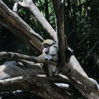 Photo taken at Lost Forest by Kochanok P. on 6/24/2014