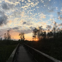 Photo taken at Bird Rookery Swamp by Joseph Y. on 1/16/2016