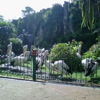 Photo taken at Kebun Binatang Ragunan by Diah S. on 1/27/2013