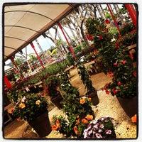 Photo taken at Jardineria Bordas by Alba R. on 5/4/2013