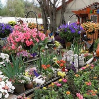 Photo taken at Gwynne's Greenhouse Garden Shoppe by Yext Y. on 6/30/2016