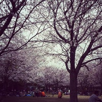 Photo taken at 美薗中央公園 by しんす on 3/29/2014