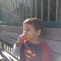Photo taken at Daniel E. Koshland Community Park by Angelica K. on 11/17/2014