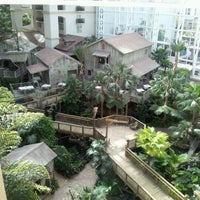 Photo taken at Gaylord Palms Resort & Convention Center by Alexander N. on 2/12/2012