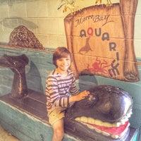 Photo taken at Morro Bay Aquarium by Shelby B. on 7/9/2015