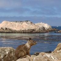Photo taken at Bird Rock by jwcha72 on 6/16/2013