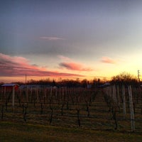 Photo taken at Sparkling Pointe Vineyards by Frank B. on 1/20/2013