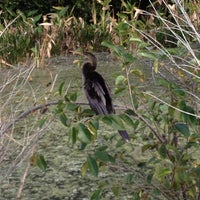 Photo taken at Green Cay Wetlands by L. Gaye H. on 12/31/2012