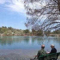 Photo taken at Lake Ella by Katie F. on 2/24/2013